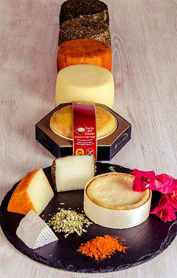 quesos-pastovelia.jpg